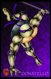 Turtle Don lr